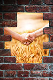 Handshake at the harvest Royalty Free Stock Photo