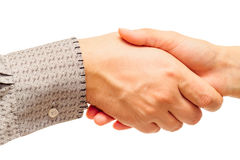 Handshake isolated on white Stock Images