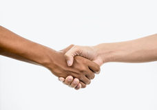 Handshake isolated on white Stock Photos