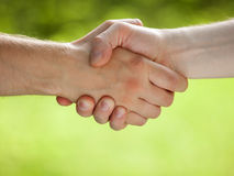 Handshake. On light green eco background Stock Photos