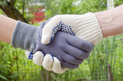 Handshake. Of male and female hands dressed in gloves Royalty Free Stock Photo