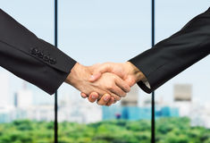 Handshake in meeting business Royalty Free Stock Photography