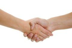 Handshake men and women Stock Photography