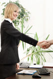 Handshake in the office Stock Image