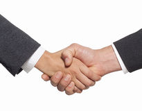 Handshake in office Stock Images