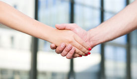 Handshake between office workers Royalty Free Stock Photography