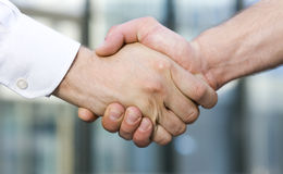Handshake between office workers Stock Image
