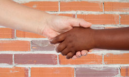Handshake between races Stock Photos
