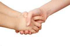 Handshake on white background Stock Image