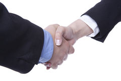 Handshaking Royalty Free Stock Image