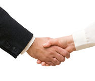 Handshaking man and woman Stock Images