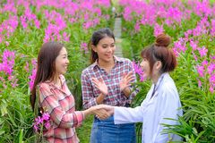 Handshaking researchers and orchid garden owners. Handshaking of researchers and orchid garden owners stock photos