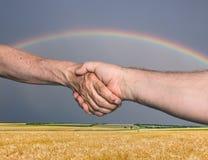 Handshaking Stock Image