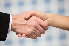 Handshaking. Two businesspeople shaking hands, business concept. Businessman and businesswoman making promising business deal Royalty Free Stock Photos