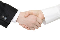 Handshaking of two persons Stock Photos