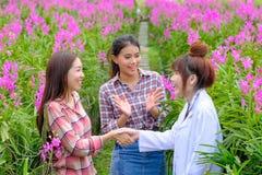 Handshakingforskare och orkidéträdgårdägare arkivfoton