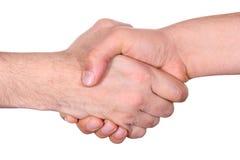 handskakning Royaltyfri Foto