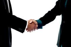 Handskakning för affärsfolk royaltyfri foto