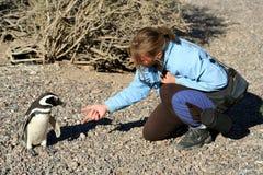 Handskakning med pingvinet Arkivfoton