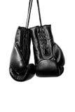 Handskar för svarta askar Royaltyfri Foto