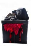 Handskar och handväska för kvinnaskounderbyxorar Arkivbilder