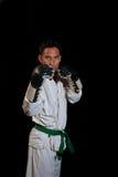 Handskar på för kumite royaltyfri bild