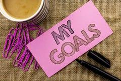 Handskrifttext som skriver mina mål För målsyfte för begrepp vision för mål för menande för strategi för beslutsamhet plan för ka Arkivfoton