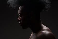 Handsome african american man. Portrait of handsome young african american man with stylish hairstyle Stock Image