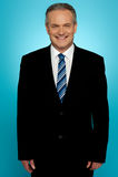 Handsome aged businessman stock photos