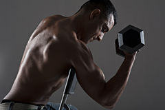 Handsome Asian male working out. Low kew portrait of handsome fit male working out by lifting a dumbell whilst seated on a chair stock photos