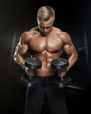 Handsome athletic guy workout with dumbbells Royalty Free Stock Photo