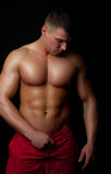 Handsome athletic male Royalty Free Stock Photography