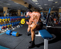 Handsome athletic man bodybuilder Stock Images