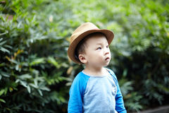 Handsome Baby Royalty Free Stock Photography