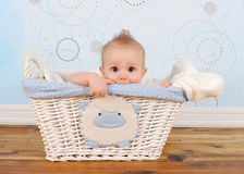 Handsome baby boy peeking out of wicker basket Royalty Free Stock Image