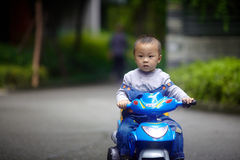 Handsome Baby Boy ridding Stock Photography