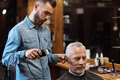 Handsome barber trimming hair of old man Stock Photography
