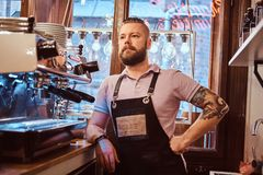Handsome barista with stylish beard and hairstyle wearing apron posing for a camera while leaning on a counter in the. Portrait of a handsome barista with royalty free stock image