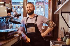 Handsome barista with stylish beard and hairstyle wearing apron posing for a camera while leaning on a counter in the. Portrait of a handsome barista with stock photos