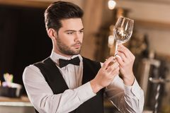 Bartender Royalty Free Stock Photos