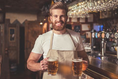 Handsome bearded bartender. In apron is holding beer, looking at camera and smiling while standing near the bar counter in pub stock photography