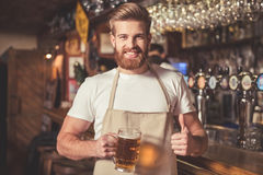 Handsome bearded bartender. In apron is holding beer, showing Ok sign, looking at camera and smiling while standing near the bar counter in pub stock images