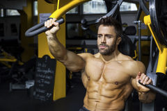 Handsome bearded bodybuilding man. An image of a handsome bearded bodybuilding man doing chest workout Stock Photos