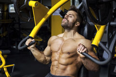 Handsome bearded bodybuilding man. An image of a handsome bearded bodybuilding man doing chest workout Stock Images