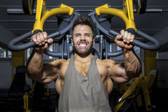 Handsome bearded bodybuilding man. An image of a handsome bearded bodybuilding man doing chest workout Royalty Free Stock Photography