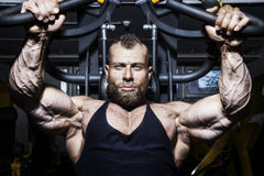 Handsome bearded bodybuilding man. An image of a handsome bearded bodybuilding man doing chest workout Stock Image