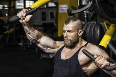 Handsome bearded bodybuilding man. An image of a handsome bearded bodybuilding man doing chest workout Royalty Free Stock Photo