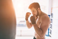 Handsome bearded boxer with bare torso is practicing punches at the fight club Royalty Free Stock Photo