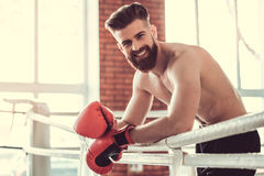 Handsome bearded boxer stock photography