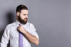 Handsome bearded businessman adjusting his tie Stock Images